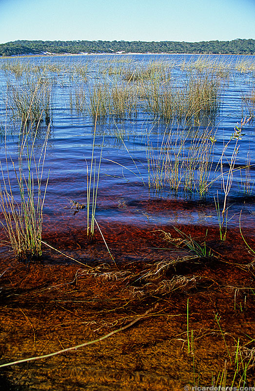 Lago Boomanjin