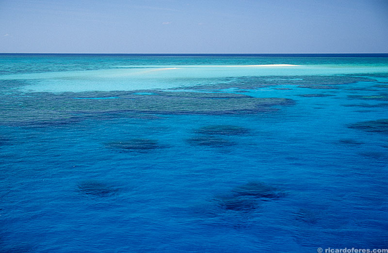 No meio do azul, a mais de 200 km da costa australiana, surgem recifes como o Flinders.