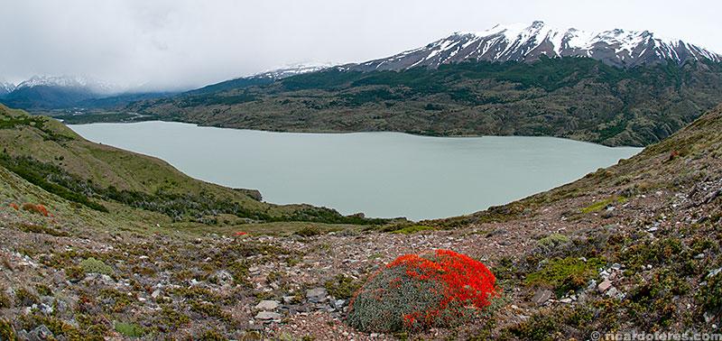 Lago Paine