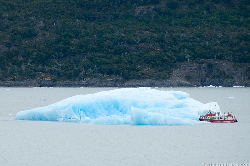 Iceberg que se desprendeu do glaciar Grey
