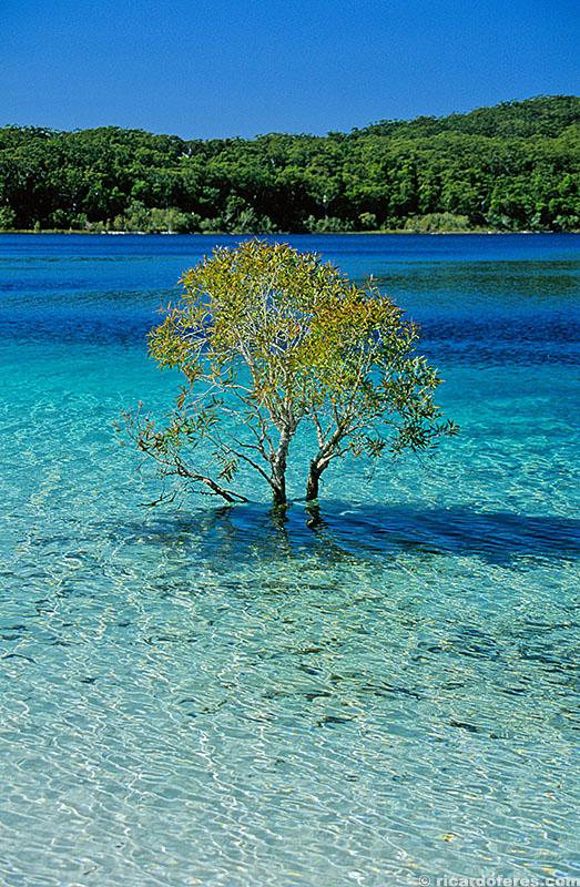 Lago McKenzie, ilha Fraser, Austrália