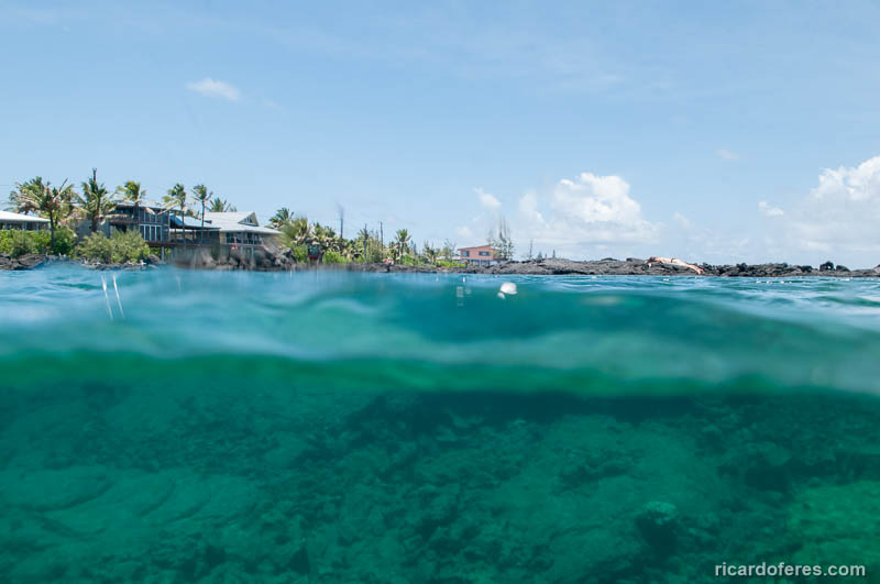 2016-05-01-2076-kapoho-tide-pools