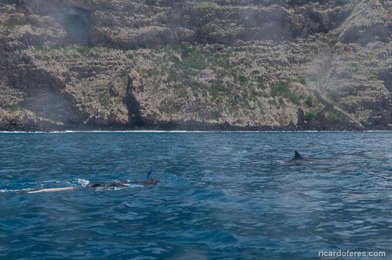 2016-05-08-2329-amanda-e-golfinhos-em-kealakekua-bay