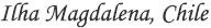Logo Ilha Magdalena