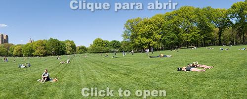central-park-1-miniatura