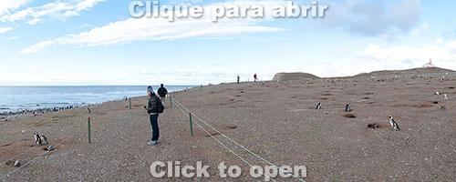 isla-magdalena-2-miniatura